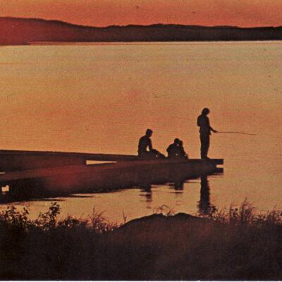 Sommarnatt i Vackra Dalen Ocirkulerat Foto: Siri Löfgren, V:a Örträsk Ägare: Ivar Söderlind 10x15