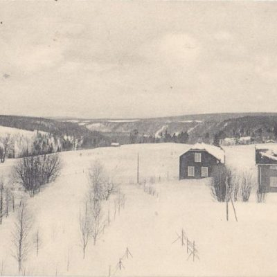 Bjurholm I. Hässler N:o 4143 Poststämplat 8/2 1??? Ägare: Åke Runnman 9x14