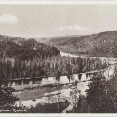 Utsikt från Lustigbacken, Bjurholm Förlag: Anderssons Pappershandel Ocirkulerat Ägare: Åke Runnman 9x14