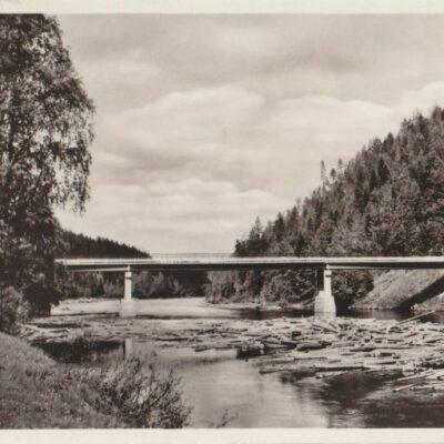 BJURHOLM Förlag: Anderssons Bok- & Pappershandel, Bjurholm Poststämplat 25/9 1952 Ägare: Åke Runnman 9x14
