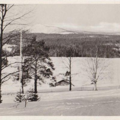 BJURHOLM Förlag: Anderssons Bok- & Pappershandel, Bjurholm Tel. 9 Poststämplat 27/3 1948 Ägare: Åke Runnman 9x14