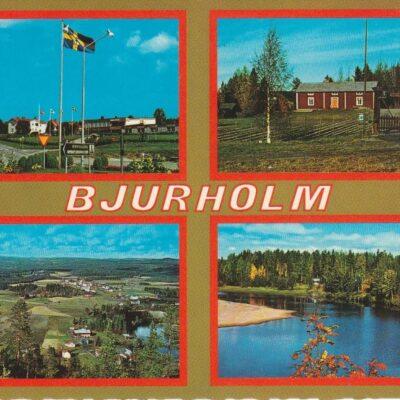 BJURHOLM Förlag: Anderssons Bok & Pappershandel Eftr. BjurholmFoto: Ernst LundgrenPoststämplat 4/7 1985Ägare: Åke Runnman10x15