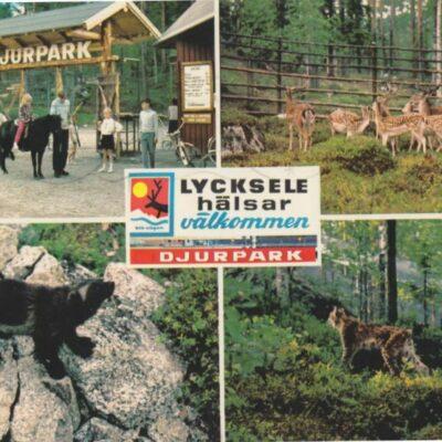 Djurparken, Lycksele Copyright: Grönlunds Foto, Skansholm Poststämplat 1/7 1974 Ägare: Åke Runnman 10x15