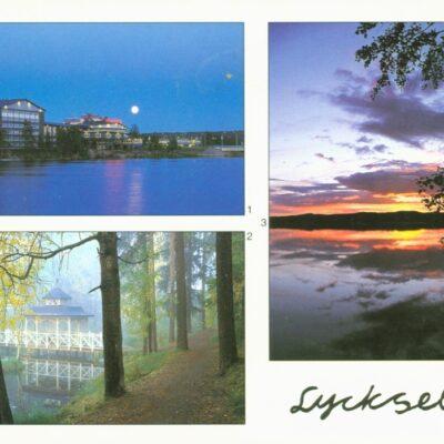 Lycksele Torgny Arnfjell Lycksele Poststämplat 6/2 2003 Ägare: Åke Runnman 10x15
