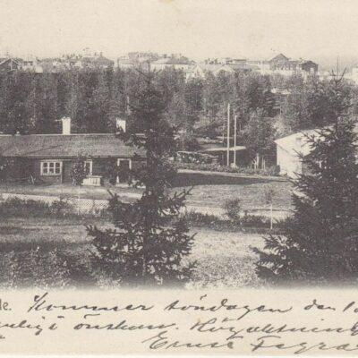 Lycksele Foto: I. A. Harnesk Poststämplat 17 maj 1909 Ägare: Åke Runnman 9x14