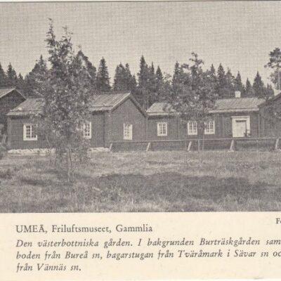 Umeå, Friluftsmuseet, Gammlia Foto: Lars Bergström J:r NR 4887 Ocirkulerat Ägare: Ivar Söderlind Även NR 3905 Ocirkulerat Ägare: Åke Runnman 9x14