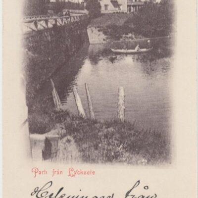 Parti från Lycksele A. & C. Imp.  Poststämplat 7/12 1901 Ägare: Åke Runnman 9x14