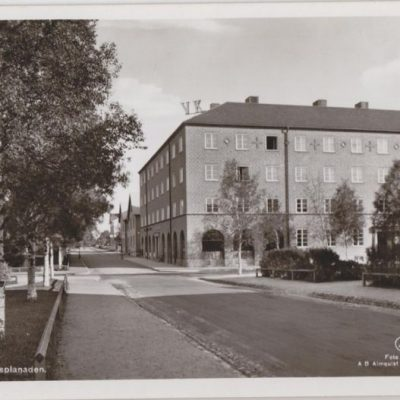 UMEÅ. Rådhusesplanaden Förlag: Bohmans Pappershandel, Umeå Ocirkulerat Ägare: Ivar Söderlind 9x14