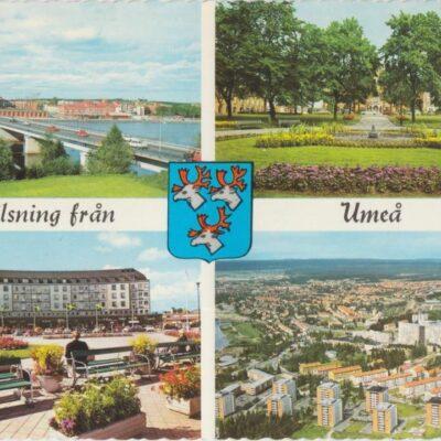 Hälsning från Umeå Copyright;: Sven Hörnell, Riksgränsen, Sweden Poststämplat 1967-10-05 Ägare: Åke Runnman 10x15