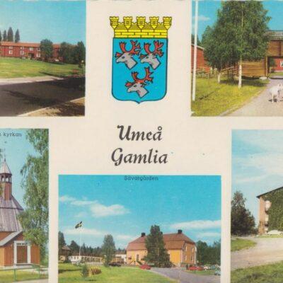 Umeå Gamlia Copyright: Sven Hörnell, Riksgränsen, Sweden Ocirkulerat Ägare: Ivar Söderlind 10x15