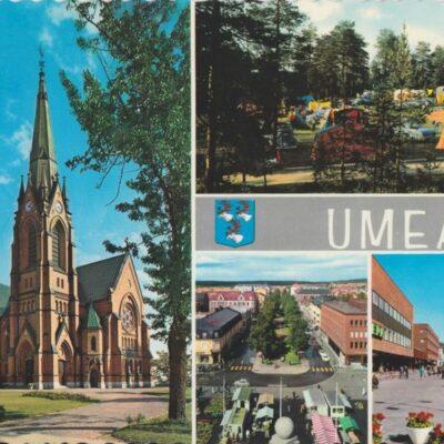 UMEÅ Förlag: Fjellströms Pappersh. Eftr. Umeå Sven Sandberg Ocirkulerat Ägare: Ivar Söderlind 10x15