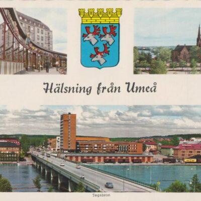Hälsning från Umeå Copyright: Sven Hörnell, Riksgränsen, Sweden Poststämplat 1965-06-20 Ägare: Ivar Söderlind 10x15