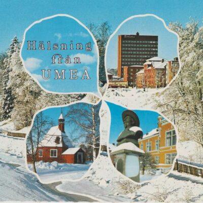 Hälsning från UMEÅ Förlag: Sandbergs Papper, Umeå Poststämplat 1987-02-20 Ägare: Ivar Söderlind 10x15