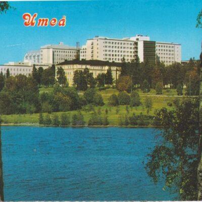 Sommarhälsningar från Umeå Hallens Reklamtryck Poststämplat 1988-05-25 Ägare: Åke Runnman 10x15