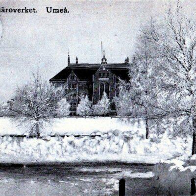 Elementarläroverket. Umeå Reinhold Hjortbergs Pappershandel, Umeå Poststämplat 25/12 1911 Ägare: Åke Runnman 9x14