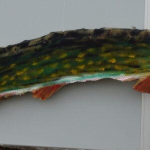 Lokala förmågor i Granträsk hade dekorerat speakervagnen med allehanda fiskar