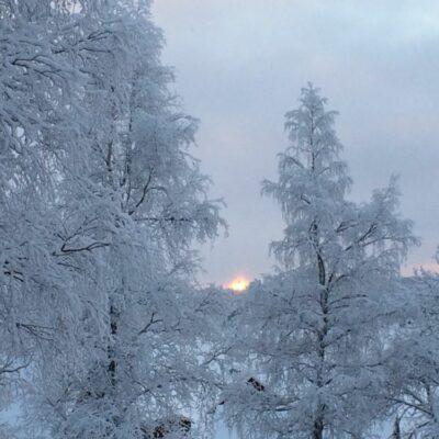 2014-01-18 Foto: Åke Runnman