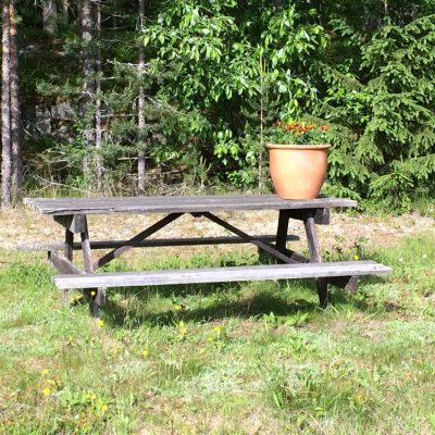 2014-06-19 Här kommer sommarhälsningen till Barbro Myrbäck.  Tagetes blommar vid Kärlekskroken. Foto: Åke Runnman