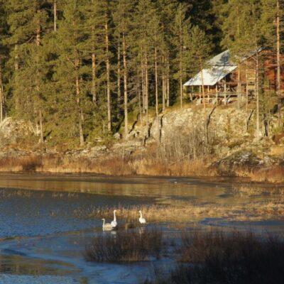 2012-11-25 Foto: Åke Runnman