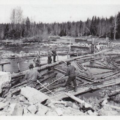 September 2014 Denna månad lånar vi en bild från Tage Örestigs foton. Bilden är från 1952 och visar tappning av virke till Storforsrännan.