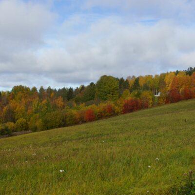 2018-09-30 Höstfärgerna har börjat sprida sig bland lövträden och på många ställen är det vackra syner som möter så här på höstkanten. Foto: Åke Runnman