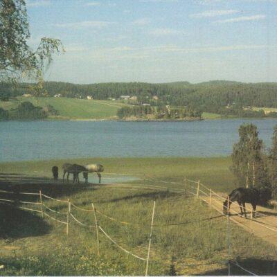 Örträskbygden, en naturskön och upplevelserik bygd i södra Lappland Projektet FEM BYAR är delfinansierad av EG:s jordbruksfond. Tryck: Vilhelmina Färgtryck AB, 97 Ocirkulerat Ägare: Åke Runnman 10x15