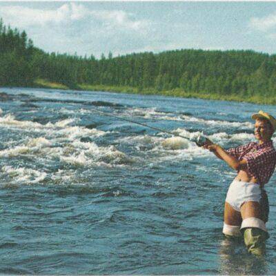 Vy av Öreälven, Bjurholm Cancerfonden Poststämplat 11/10 1967 Ägare: Åke Runnman 10x15