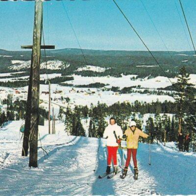 Rågberget Agnäs Förlag: Anderssons Bok & Pappershandel Eftr. BjurholmPoststämplat 7/3 1994Ägare: Åke Runnman10x15