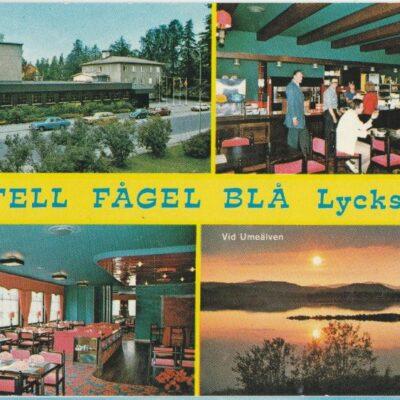 Hotell Fågel Blå, Lycksele Copyright: Grönlunds Foto, Skansholm, Vilhelmina Poststämplat 17/7 1986 Ägare: Åke Runnman 10x15