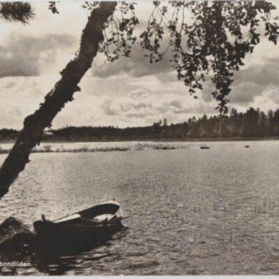 Motiv från Husbondliden Foto: Nina Lundberg, Lycksele Poststämplat 6/7 1955 Ägare: Åke Runnman 9x14