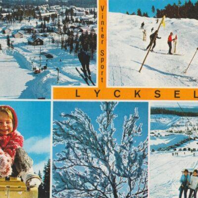 Vinter Sport LYCKSELE Copyright: Grönlunds Foto, Skansholm Daterat 8/1 1980 plundrat Ägare: Ivar Söderlind 10x15