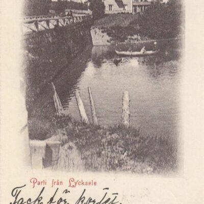 Parti från Lycksele A. & C. Imp.  Poststämplat 17/2 1902 Ägare: Åke Runnman 9x14