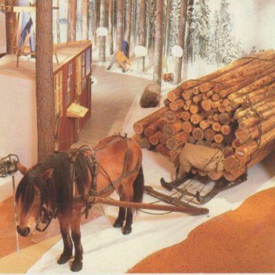 Skogsmuseet Lycksele Nya Tryckeriet AB, Lycksele 1987 Ocirkulerat Ägare: Åke Runnman 10x15