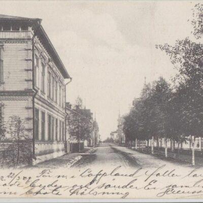 Lycksele Foto: I. A. Harnesk Poststämplat 22/3 1909 Ägare: Åke Runnman 9x14
