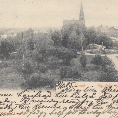 Umeå. Vy från residenset Imp. Nya Cigarrhandeln. Umeå Poststämplat 1905-02-09 Ägare: Ivar Söderlind 9x14