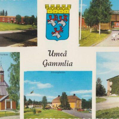 Umeå Gammlia Copyright: Sven Hörnell, Riksgränsen, Sweden Poststämplat 1970-07-25 Ägare: Ivar Söderlind 10x15