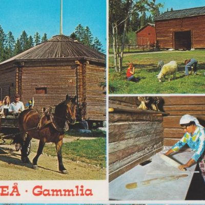 UMEÅ - Gammlia Hallens reklamtryck Poststämpel oläslig Ägare: Ivar Söderlind 10x15