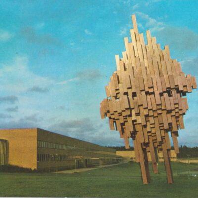 """UMEÅ - Björkarnas stad """"Norra Skenet"""" vid Universitetet Hallens foto Poststämplat 1971-08-12 Ägare: Åke Runnman 10x15"""