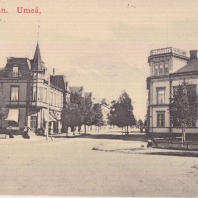 Kungsgatan. Umeå REINHOLD HJORTSBERGS PAPPERSHANDELPoststämplat 1913-02-14Ägare: Åke Runnman9x14
