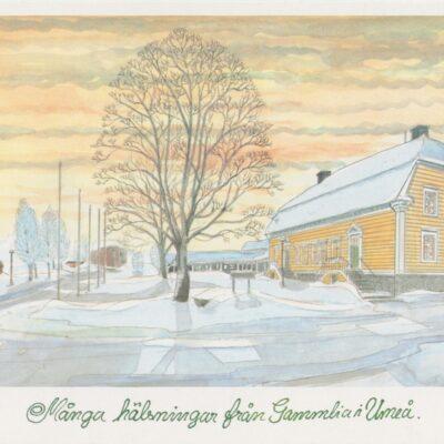 Många hälsningar från Gammlia i Umeå Centraltryckeriet Umeå 1996 Ocirkulerat Ägare: Ivar Söderlind 15x21