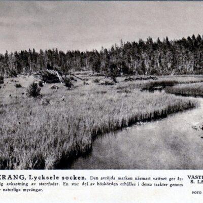 SLÅTTERÄNG, Lycksele socken STF - Foto E. Bergström Ocirkulerat Ägare: Åke Runnman 10x15