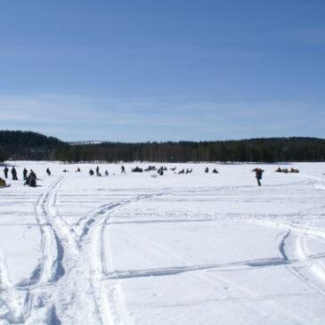Bilder från pimpeltävlingen i Vargträsk