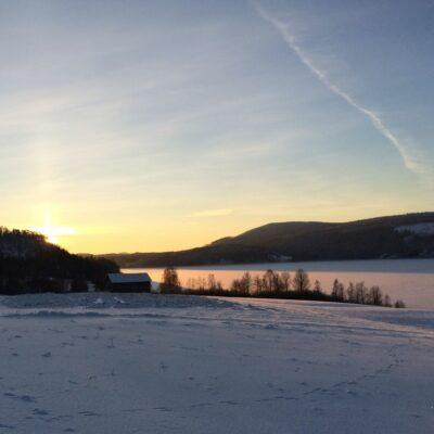 2014-01-31 Foto: Åke Runnman