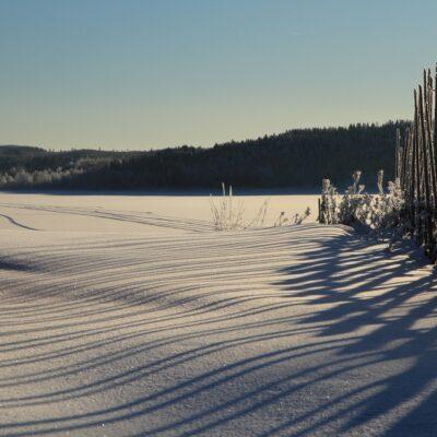 2015-02-02 En strålande sol skiner över hembygdsområdet Foto: Elsebeth Wälivaara