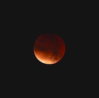 2015-09-30 Natten mot måndagen den 28 september 2015 blev det så kallad blodmåne och supermåne på samma gång. Nästa gång det inträffar blir 2033. Så här vacker var månen över Örträsket. Foto: Elsebeth Wälivaara