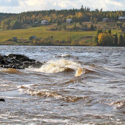2014-10-13 Hösten har kommit och det blåser nordanvind. Foto: Elsebeth Wälivaara