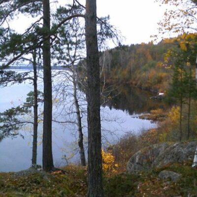2013-10-27 Foto: Agneta Höglund