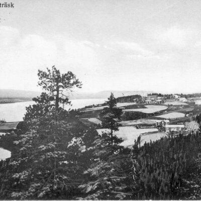 """December 2005 Så har hjälpen än en gång kommit från Margareta Dahlgren, tack. Utsikt från Gaffelberget över centrala byn, med kyrkan längst bort, år 1915. I förgrunden;  Fälla, med bostadshus och lagård. Lagården ersatt av en ny med höskulle  i början av 1930-talet, även den numera borttagen. T.h. skymtar ett litet hus, som förmodligen är det härbre som fortfarande finns kvar. År 1915 var Johan Eriksson, """"Fäll-Janne"""", och hans hustru Sofia ägare till hemmanet, som så småningom övertogs av sonen Thorsten Johansson och numera ägs av sonsonen Nils Thorstensson. Det ljusa partiet mellan lagården och det lilla huset, kan vara kornhässjan, förmodligen med stöttor.  Bostadshuset är numera ersatt av ett mindre,timrat hus. Den andra gården på Fälla, närmare Gaffelberget, är skymd av träden. Den ägdes av Johan Erikssons bror Gustav, """"Fäll Gustav"""". Husen revs på 1940-talet av den nye ägaren av hemmanet sedan början av 1930-talet, Johan Dahlgren. T.h. det ljusa huset; Anna och Jonas Dahlgrens, med lagård, bagarstuga och uthus, bestående av sommarlagård och vagnslider bl.a., och mot berget även en isbod. En timrad korn- och matbod fanns också, men den är skymd av träden i förgrunden. Den flyttades på 1930-talet till Brodala och blev en övernattningskoja som  brann ned 1946.  Bagarstugan uthyrdes vid marknaden, som påbörjades den 7 januari och pågick i två dagar. (Se sid. 76 i boken """"Något om Örträskbygden, Örträsk och Långsele för gammalt""""). Förmodligen revs bagarstugan omkring 1920 i samband med att Signe Dahlgrens föräldrar, Carin och Carl Olof Lindström, byggde sitt hus och flyttade dit från Tallåsen, Långsele.       Huset  bebos numera av Maria och Bruno Dahlgren.  Bostadshuset på gården byggt på 1860-talet i traditionell stili ett plan,av Jonas Dahlgrens far, Jakob Johansson. 1909 påbyggdes huset med en våning, kakelugnar installerades och fasaden kläddes in med liggande panel. 1930 ersattes lagården med en ny med höskulle.                  Senare ägare; Signe och Johan Dah"""