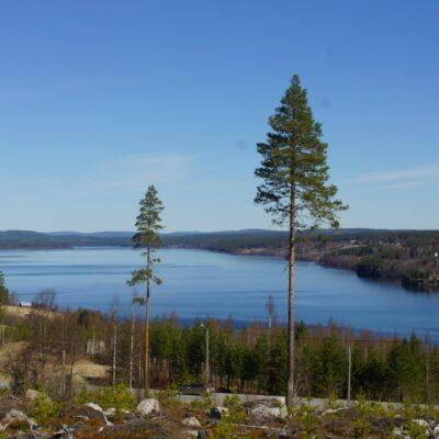 2017-05-21 Så ligger sjön isfri igen efter ännu en vinter. I går kväll fanns fortfarande några isflak som sakta flöt neröver, men på morgonen var all is borta. Foto: Åke Runnman