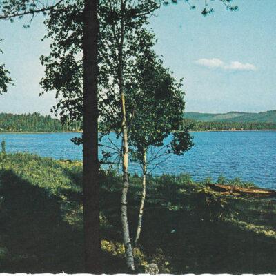 Bjurholm. Angsjön Foto: Ernst Lundgren. Förlag: Anderssons Bok & Pappershandel Eftr. Bjurholm Ocirkulerat Ägare: Åke Runnman 10x15